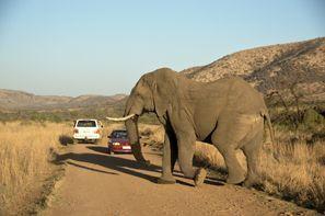 Aluguer de carros em Klerksdorp, África do Sul