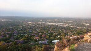 Aluguer de carros em Rosebank, África do Sul