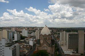 Aluguer de carros em Araraquara, Brasil