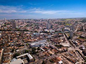 Aluguer de carros em Franca, Brasil