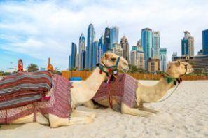 Aluguer de carros Emirados Árabes Unidos