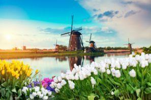 Aluguer de carros Holanda